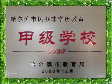 图片为哈尔滨新发展复读学校获得甲级学校金属奖牌